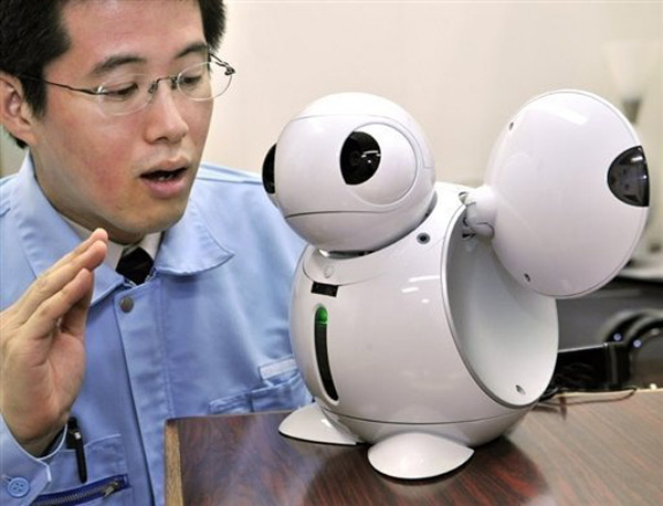 The State of Household Robots in Japan