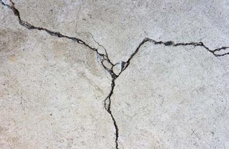 Bacteria To Be Used In Buildings Repair 1