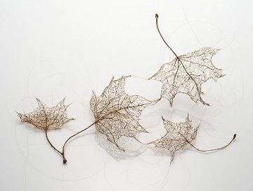 Awesome Tree Leaves Made Of Stitched And Knotted Human Hair By Jenine Shereos [PICS]