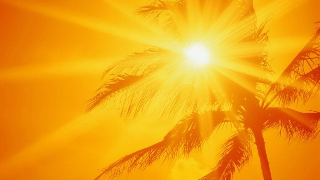 summer season,summer heat,heat in summer,summer season,summer heat,heat in summer