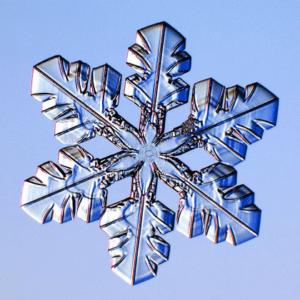 snowflake, Snowflakes