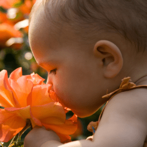 emotion smell, baby smells, Smell Directly Affects Emotions