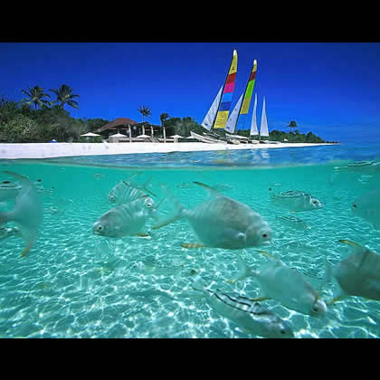 Top 10 Paradise Islands That Will Take Your Breath Away 1