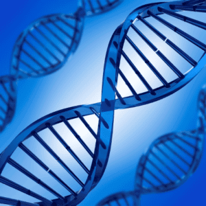 gene anal, Insignificant DNA