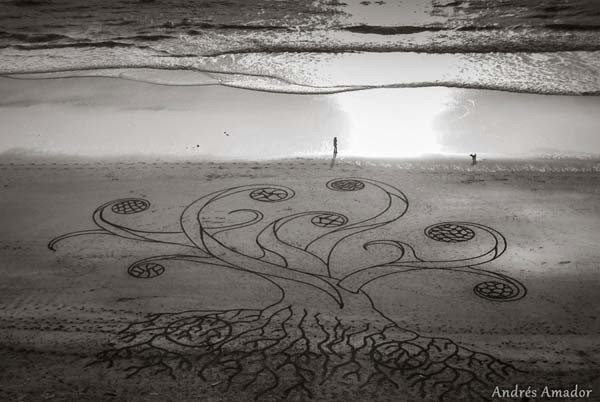 Art tree, Art on beach, Designs on beach, Andres Amador art, Beach art design, Beach art, Andres Amador, art, beach art, drawing, sculptor, art pictures, amazing art