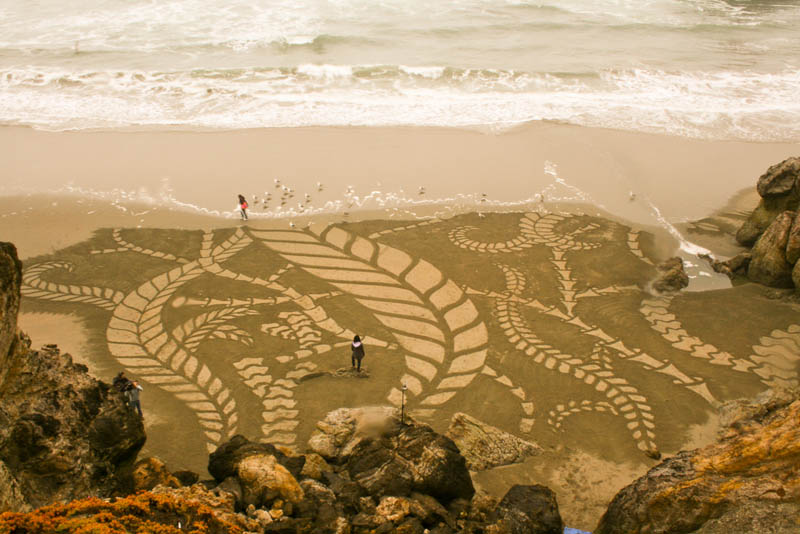 Designs on beach, Andres Amador art, Beach art design, Beach art, Andres Amador, art, beach art, drawing, sculptor, art pictures, amazing art