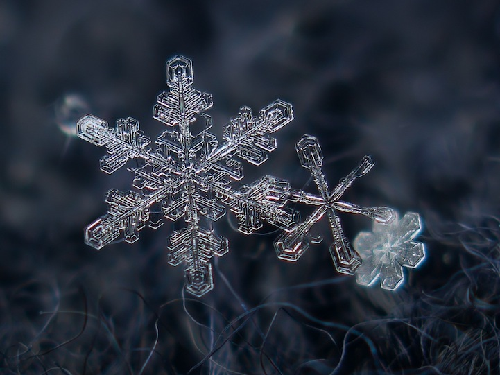 Snowflakes captured by Alexey Kljatov, Macro details of snowflakes, snowflakes, snowflakes up close, photos of snowflakes, photography, amazing snowflakes photography