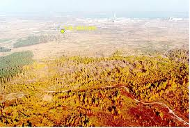 Red Forest of Chernobyl, Chernobyl