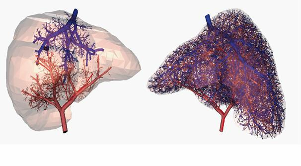 Researchers Can Now 3D Print Working Blood Vessels 1