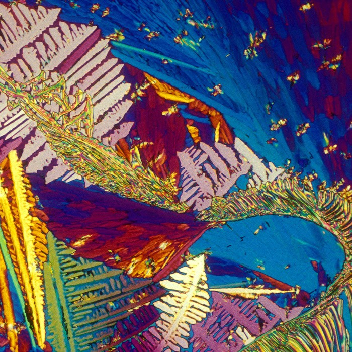 Amazing Pictures Of Alcoholic Drinks Under The Microscope 1