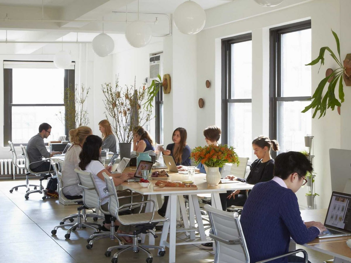 Food52's offices