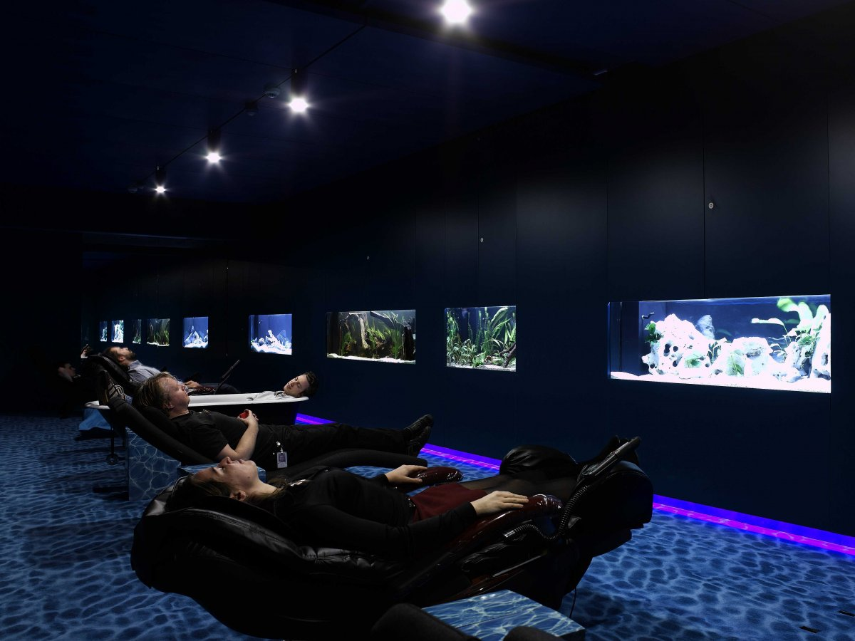 google water lounge for relaxation