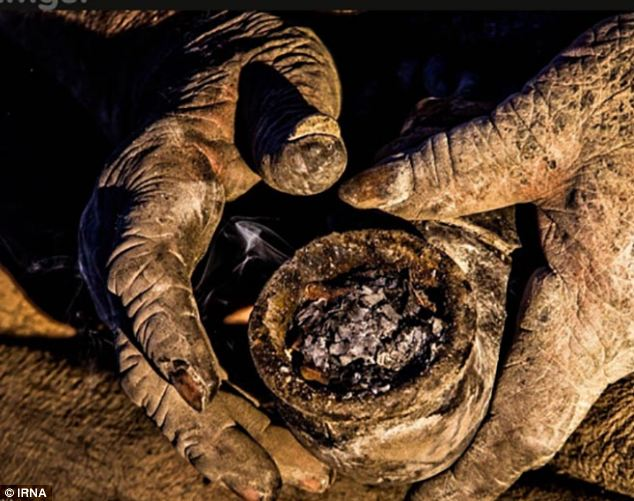 Haji's pipe, Amou Haji, dirtiest man, Iranian dirtiest man, Man Hasn't Bathed In 60 Years