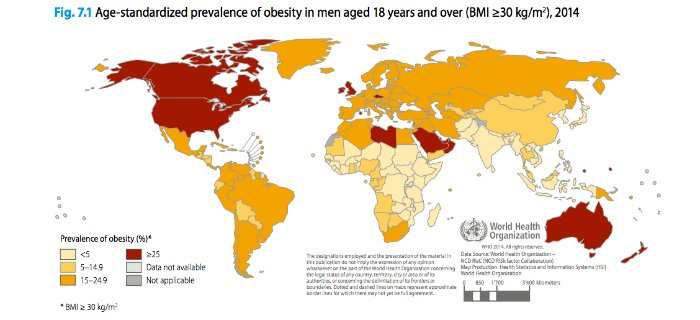 These Are The Most Obese Nations In The World 1