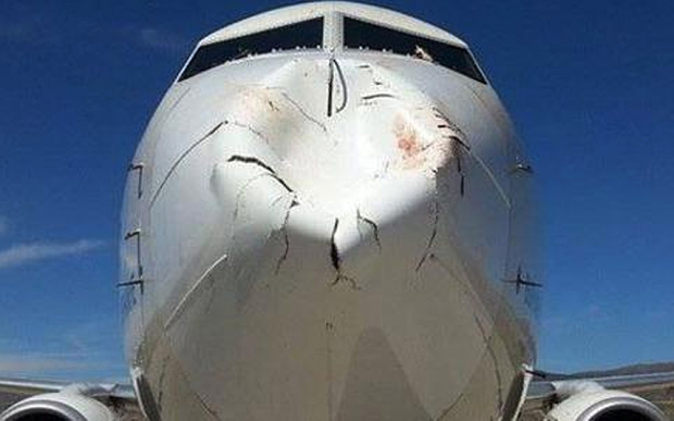 Bird Makes Huge Dent Into Nose Of Boeing 737 Airplane 1