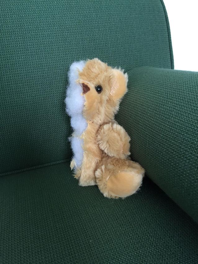 Half teddy