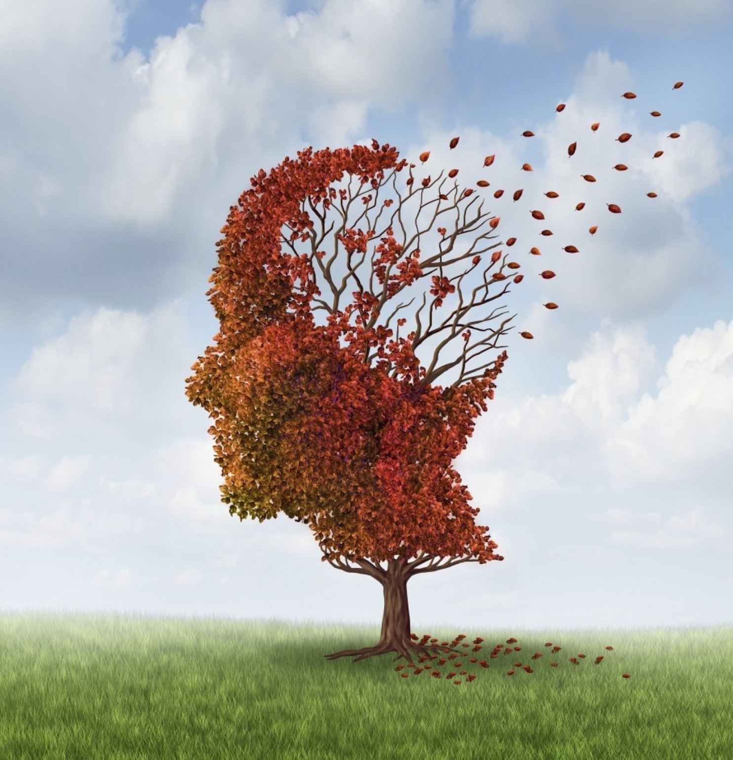 New MIT study suggests that Alzheimer's 'lost memories' might recoverable