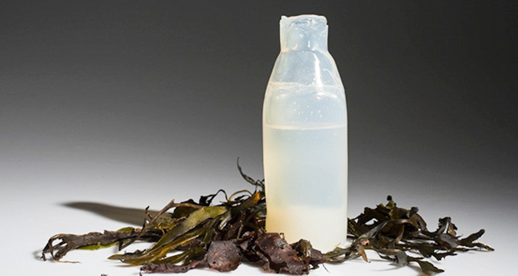 Algae-made water bottles could prevent 50 billion plastic bottles a year from ending up in landfills