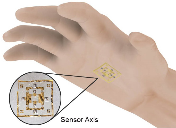 Electronic Skin Puts the World in the Palm of Your Hand