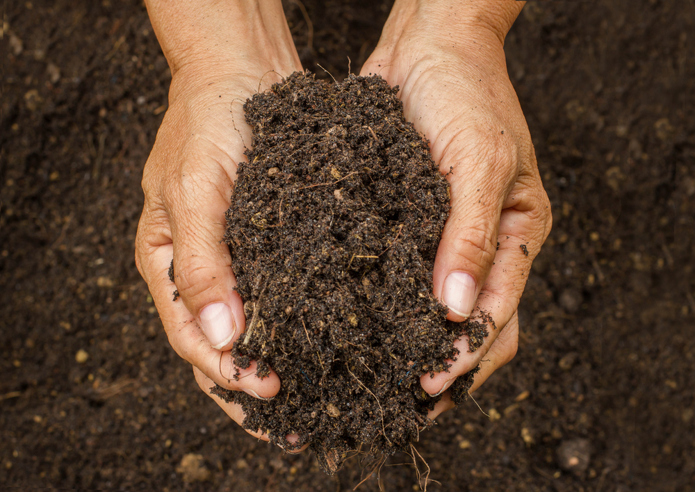 Dirt Could Help Fight Superbugs