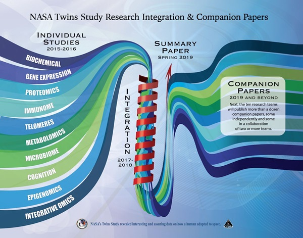 This graphic illustrates how the individual Twins Study projects were integrated into the single summary paper that was just released. Later this year, individual projects will publish several companion papers delving into the specifics of each study. (Credit: NASA)